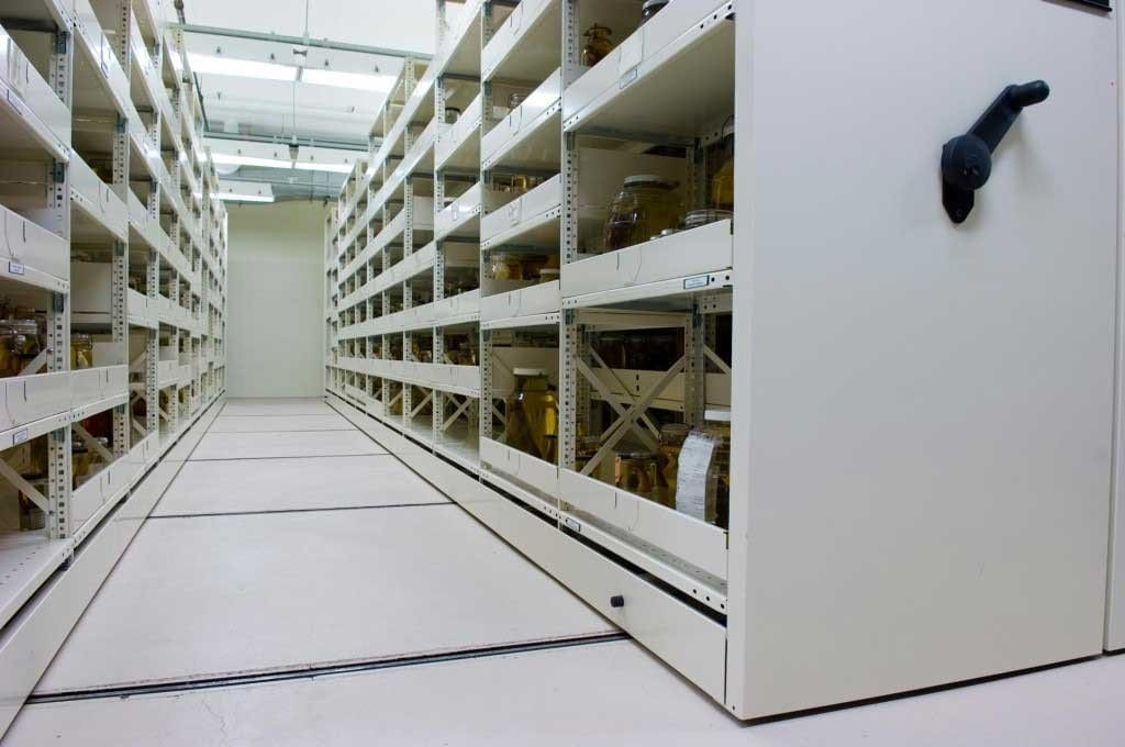 Museum Storage Solutions Bradford Systems